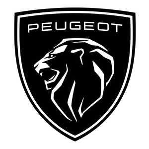 elektromos autó töltő Peugeot-hoz
